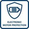Elec motor Pro